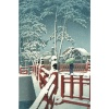 Snow at Yagumo Bridge of Nagata Shrine, Kobe